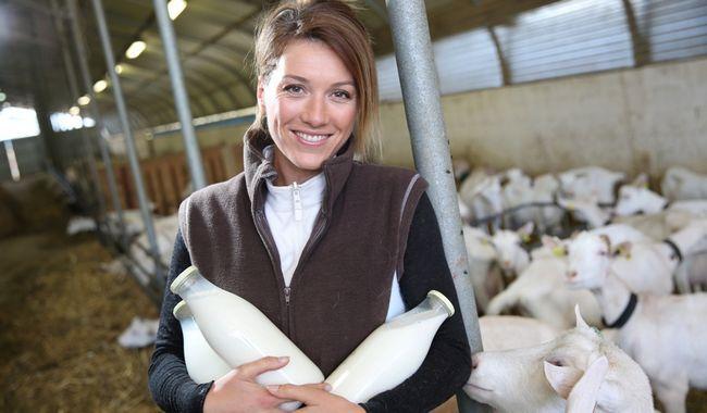 10 Фактів про цілющі властивості козячого молока