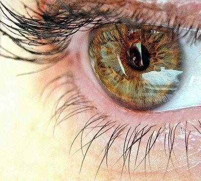 Очні хвороби (офтальмологія) покращуємо зір чорницею