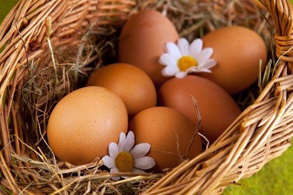 Куряче яйце від виразки на мові