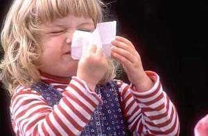 Як лікувати алергічний риніт - симптоми, лікування, краплі, ліки