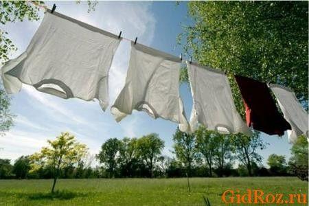 Вивісивши одяг на вулиці, можна вирішити проблему з запахом!